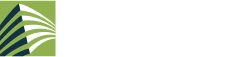 CCIG Logo footer